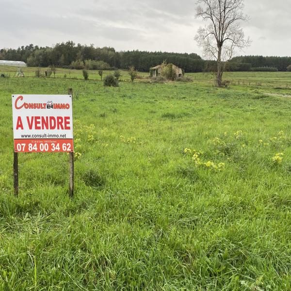 Offres de vente Terrain Braud-et-Saint-Louis 33820
